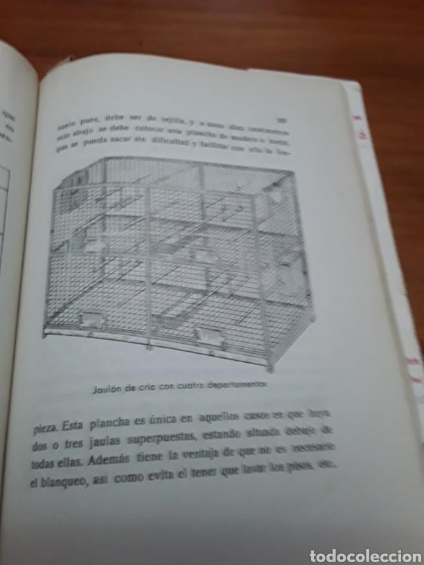 Libros de segunda mano: EL PERIQUITO ,ORIGEN CRÍA ENFERMEDADES AÑO 1954 ANTONIO Y JUAN GARAU SALVA - Foto 4 - 104451946