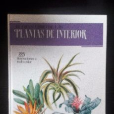 Libros de segunda mano: EL GRAN LIBRO DE LAS PLANTAS DE INTERIOR 225 ILUSTRACIONES A TODO COLOR SUSAETA. Lote 104924151