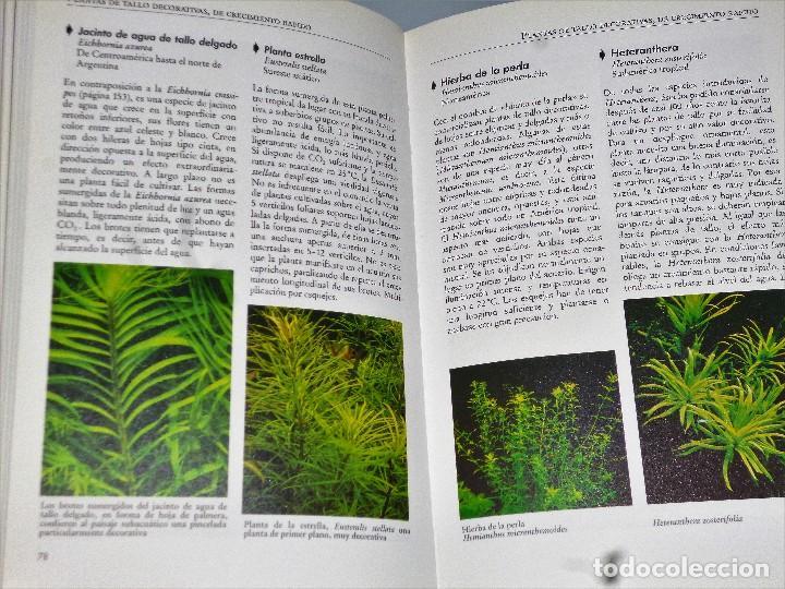 Libros de segunda mano  NUEVA GUÍA PRÁCTICA DE PLANTAS ACUÁTICAS. - Foto 2 - cfacda76720