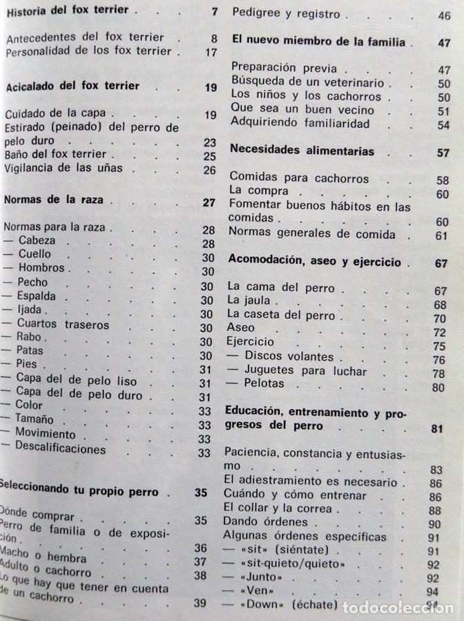 Libros de segunda mano: EL FOX TERRIER - LIBRO EVELYN MILLER GUÍA DE CUIDAR PERRO - HISTORIA - PERROS FOTOS MASCOTA CUIDADOS - Foto 2 - 107433695