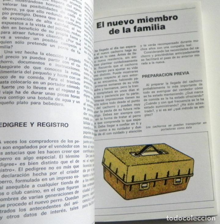 Libros de segunda mano: EL FOX TERRIER - LIBRO EVELYN MILLER GUÍA DE CUIDAR PERRO - HISTORIA - PERROS FOTOS MASCOTA CUIDADOS - Foto 5 - 107433695
