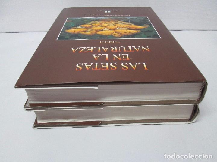 Libros de segunda mano: LAS SETAS EN LA NATURALEZA. TOMO I Y II. RAMON MANDAZA DE ACUÑA. IBERDROLA 1994 Y 1996. VER FOTOS - Foto 5 - 107593479