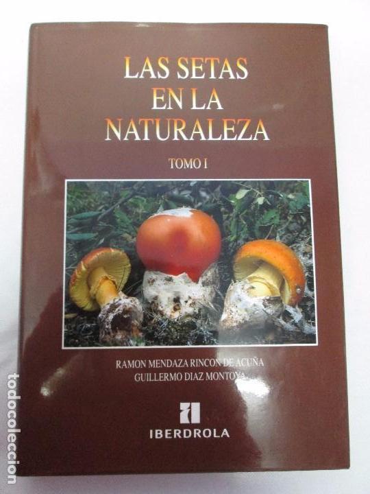 Libros de segunda mano: LAS SETAS EN LA NATURALEZA. TOMO I Y II. RAMON MANDAZA DE ACUÑA. IBERDROLA 1994 Y 1996. VER FOTOS - Foto 6 - 107593479