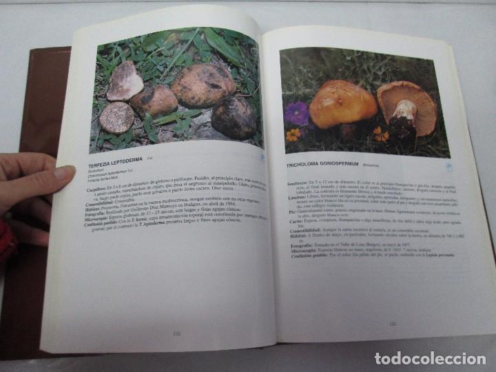 Libros de segunda mano: LAS SETAS EN LA NATURALEZA. TOMO I Y II. RAMON MANDAZA DE ACUÑA. IBERDROLA 1994 Y 1996. VER FOTOS - Foto 12 - 107593479