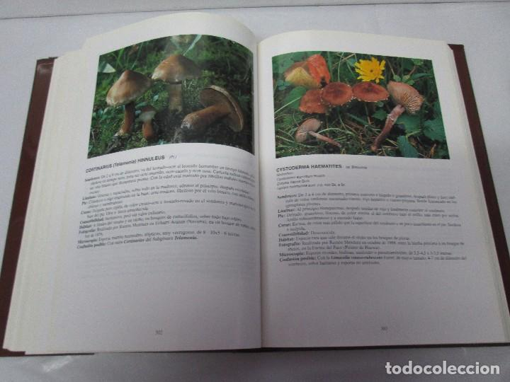 Libros de segunda mano: LAS SETAS EN LA NATURALEZA. TOMO I Y II. RAMON MANDAZA DE ACUÑA. IBERDROLA 1994 Y 1996. VER FOTOS - Foto 13 - 107593479