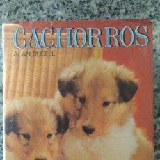 Libros de segunda mano - CACHORROS, por ALAN RUSELL - EDMORS S,A, - TAPAS DURAS CON SOBRECUBIERTA - ESPAÑA - 1986 - 107622847