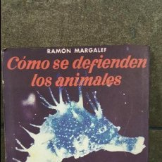 Libros de segunda mano - COMO SE DEFIENDEN LOS ANIMALES.RAMON MARGALEF.COLECCION ESTUDIO NUM 86 SEIX BARRAL. - 108007019