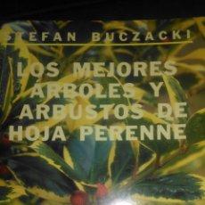 Libros de segunda mano: LOS MEJORES ÁRBOLES Y ARBUSTOS DE HOJA PERENNE. STEFAN BUCZACKI. H BLUME. 2000. RÚSTICA. PÁGINAS 95.. Lote 109208051