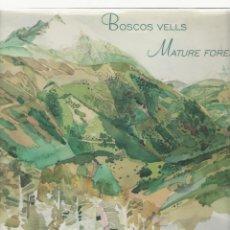 Libros de segunda mano: NUMULITE 2434 BOSCOS VELLS MATURE FORESTS ARTISTS FOR NATURE ALS PIRINEUS CATALANS TERRITORI NATURA. Lote 109981999