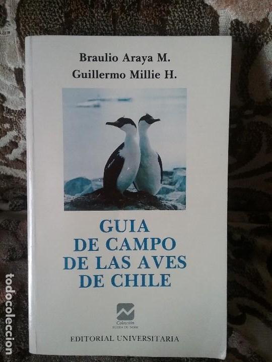 GUIA DE CAMPO DE LAS AVES DE CHILE, POR ARAYA Y MILLIE. ILUSTRADA (ORNITOLOGÍA) (Libros de Segunda Mano - Ciencias, Manuales y Oficios - Biología y Botánica)