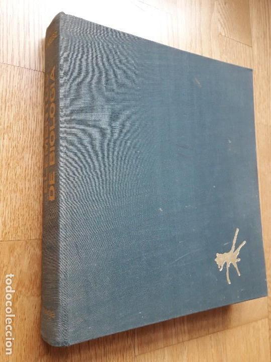 ELEMENTOS DE BIOLOGÍA / PAUL B. WEISZ / EDICIONES OMEGA, 1ª EDICIÓN - 1968 (Libros de Segunda Mano - Ciencias, Manuales y Oficios - Biología y Botánica)
