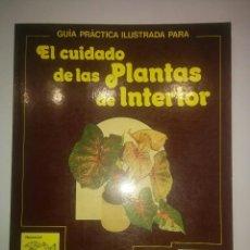 Libros de segunda mano: GUÍA PRÁCTICA ILUSTRADA PARA EL CUIDADO DE LAS PLANTAS DE INTERIOR 1981 DAVID LONGMAN ED. BLUME. Lote 112093531