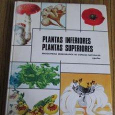 Libros de segunda mano: PLANTAS INFERIORES PLANTAS SUPERIORES - ENCICLOPEDIA MONOGRÁFICA DE CIENCIAS NATURALES Nº 2. Lote 112126623