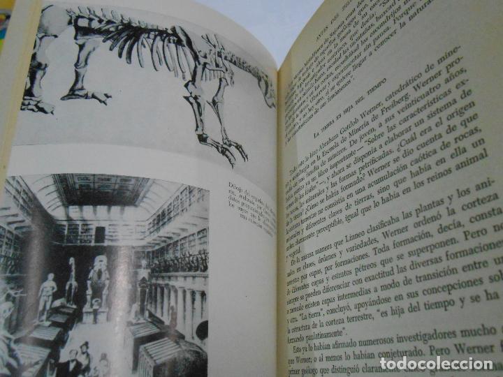 Libros de segunda mano: ANTES DEL DILUVIO. - HERBERT WENDT. - EDITORIAL NOGUER. TDK333 - Foto 3 - 112503059