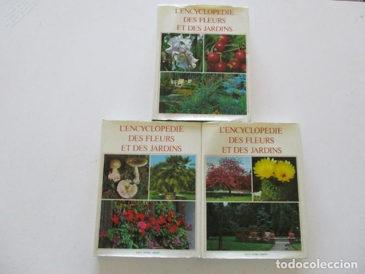 MAURICE DUMONCEL (DIR.). L'ENCYCLOPEDIE DES FLEURS ET DES JARDINS. TRES TOMOS. RM85625. (Libros de Segunda Mano - Ciencias, Manuales y Oficios - Biología y Botánica)