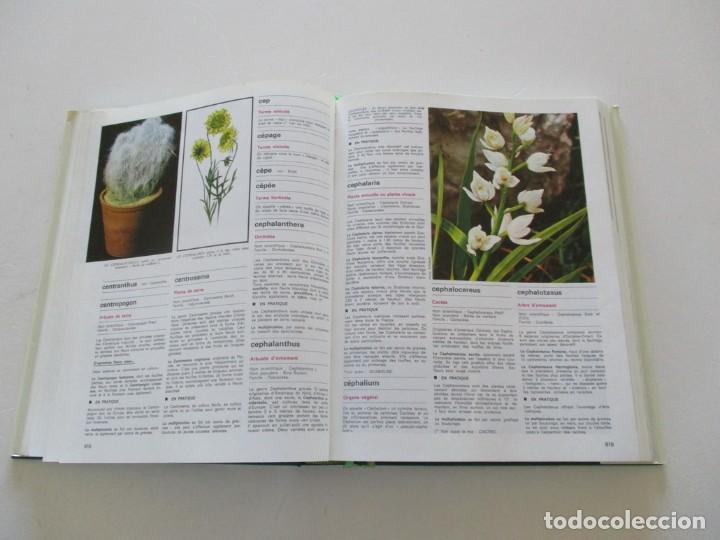 Libros de segunda mano: MAURICE DUMONCEL (DIR.). L'Encyclopedie des Fleurs et des Jardins. TRES TOMOS. RM85625. - Foto 5 - 112996615
