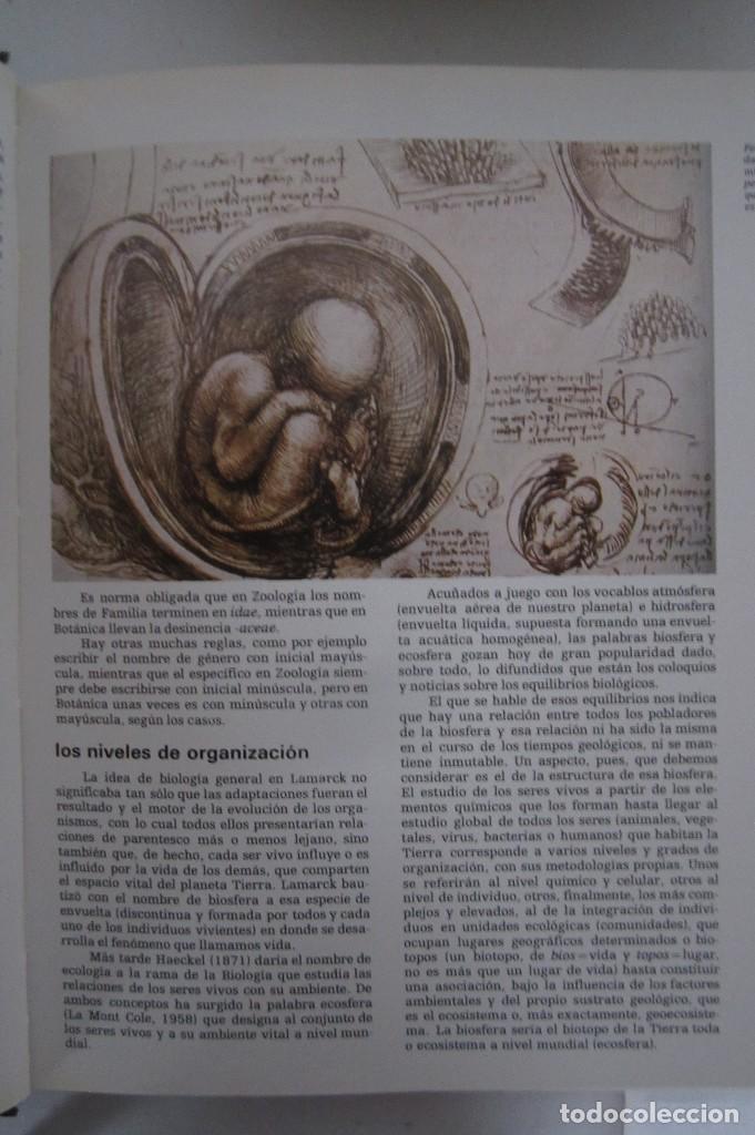 Libros de segunda mano: Historia Natural. De Biblioteca Cultural. Compendio de la vida en todas sus formas - Foto 4 - 113108483
