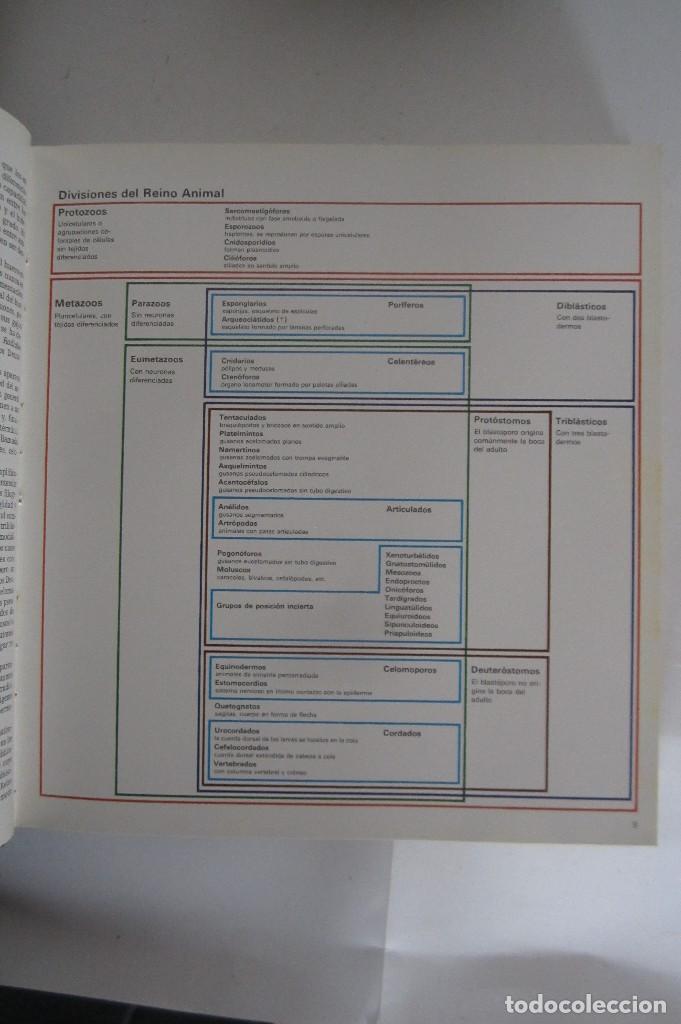 Libros de segunda mano: Historia Natural. De Biblioteca Cultural. Compendio de la vida en todas sus formas - Foto 7 - 113108483