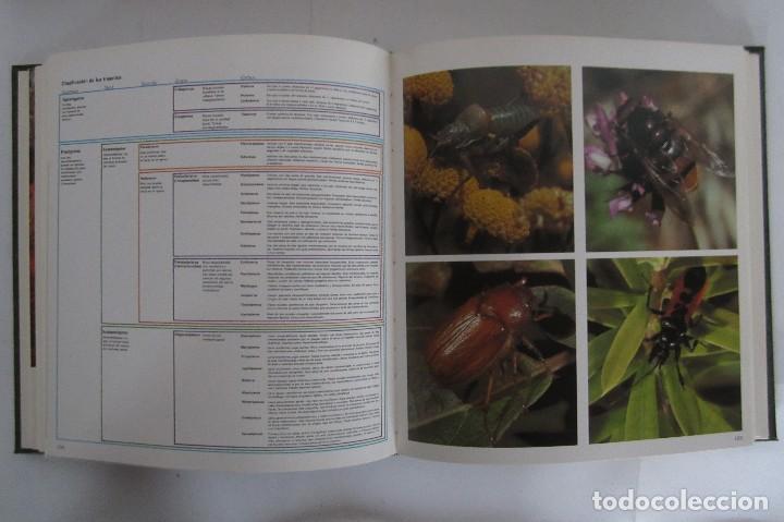 Libros de segunda mano: Historia Natural. De Biblioteca Cultural. Compendio de la vida en todas sus formas - Foto 9 - 113108483