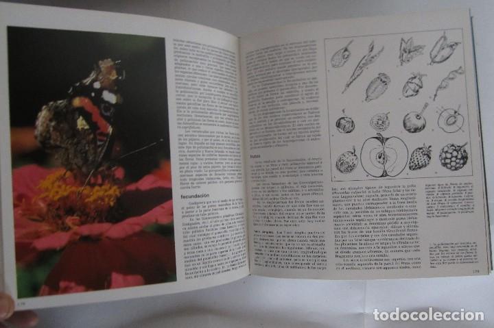 Libros de segunda mano: Historia Natural. De Biblioteca Cultural. Compendio de la vida en todas sus formas - Foto 11 - 113108483