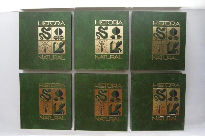 Libros de segunda mano: Historia Natural. De Biblioteca Cultural. Compendio de la vida en todas sus formas - Foto 2 - 113108483
