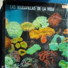 Libros de segunda mano: LAS MARAVILLAS DE LA VIDA LIFE . Lote 113155091