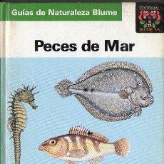Libros de segunda mano: GUIAS DE LA NATURALEZA BLUME PECES DE MAR (1989). Lote 113491315