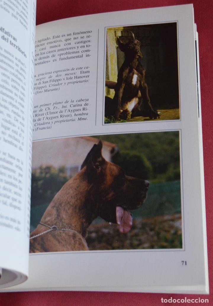 Libros de segunda mano: EL DOGO ALEMAN - EDITORIAL DE VECCHI - PERROS DE RAZA - Foto 3 - 113574931