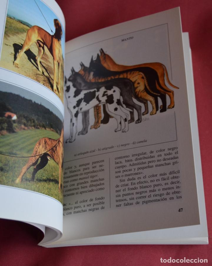Libros de segunda mano: EL DOGO ALEMAN - EDITORIAL DE VECCHI - PERROS DE RAZA - Foto 4 - 113574931