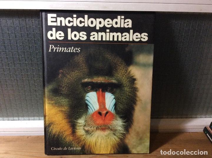 ENCICLOPEDIA DE LOS ANIMALES - PRIMATES. (Libros de Segunda Mano - Ciencias, Manuales y Oficios - Biología y Botánica)