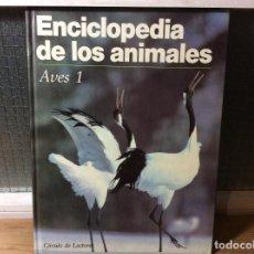 Libros de segunda mano: ENCICLOPEDIA DE LOS ANIMALES - AVES 1. Lote 113706227