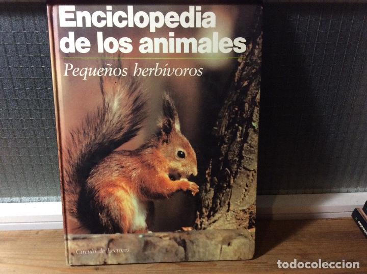 ENCICLOPEDIA DE LOS ANIMALES - PEQUEÑOS HERBÍVOROS. (Libros de Segunda Mano - Ciencias, Manuales y Oficios - Biología y Botánica)