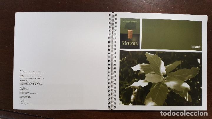 Libros de segunda mano: Manual de buenas prácticas sobre la regeneración del monte alcornocal. FORESTAL Quercus suber - Foto 2 - 196518417