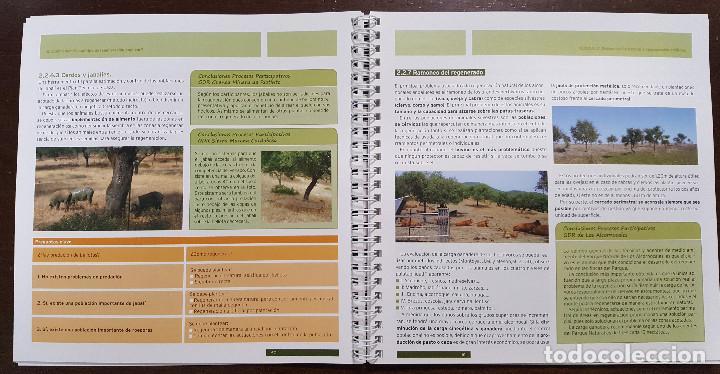 Libros de segunda mano: Manual de buenas prácticas sobre la regeneración del monte alcornocal. FORESTAL Quercus suber - Foto 3 - 196518417