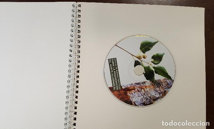 Libros de segunda mano: Manual de buenas prácticas sobre la regeneración del monte alcornocal. FORESTAL Quercus suber - Foto 4 - 196518417