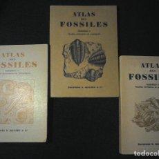 Libros de segunda mano: ATLAS DE FOSSILES I II Y III. Lote 114384715