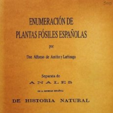 Libros de segunda mano: ENUMERACION DE PLANTAS FOSILES ESPAÑOLA.AREITIO Y LARRINAGA, -PALEOBOTANICA -PALEONTOLOGIA FAC1874. Lote 256042350