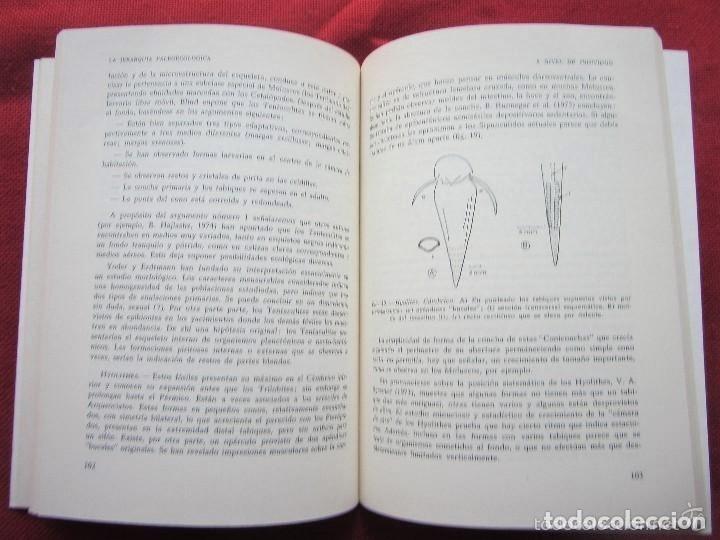 Libros de segunda mano: PALEOECOLOGÍA - Roger, J.-PARANINFO - PALEONTOLOGÍA- ECOLOGÍA- FÓSILES - FOSIL - Foto 2 - 116156791