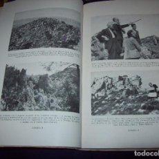 Livros em segunda mão: FLÓRULA DE CARDÓ. DR. P. FONT Y QUER. ILUSTRACIONES BOTÁNICAS : E. SIERRA Y RÁFOLS. 1950. UNA JOYA!!. Lote 115260919