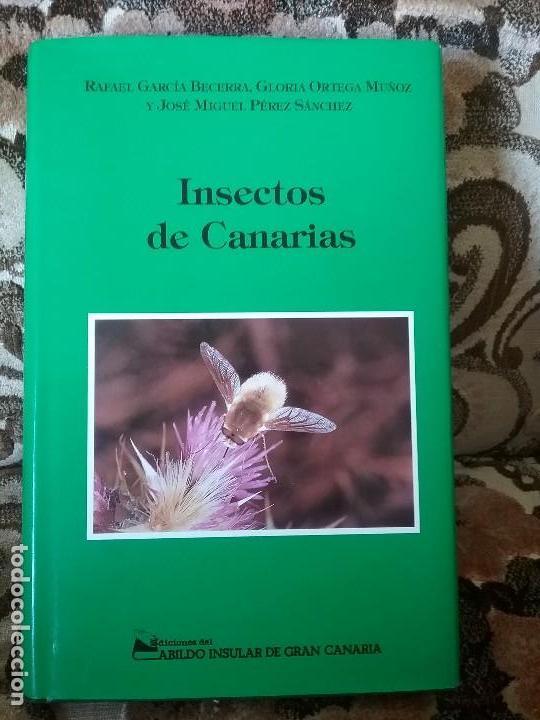 INSECTOS DE CANARIAS, DE VVAA. CIENTOS DE FICHAS CON FOTO A COLOR. EXCELENTE ESTADO (ENTOMOLOGIA) (Libros de Segunda Mano - Ciencias, Manuales y Oficios - Biología y Botánica)