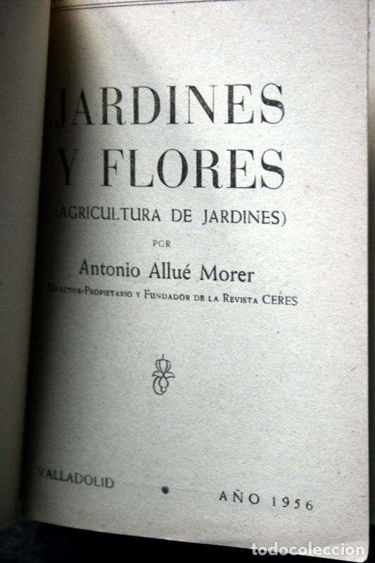 Libros de segunda mano: JARDINES Y FLORES - Antonio ALLUE MORER - CERES - VALLADOLID - ILUSTRADO - Foto 3 - 49065723