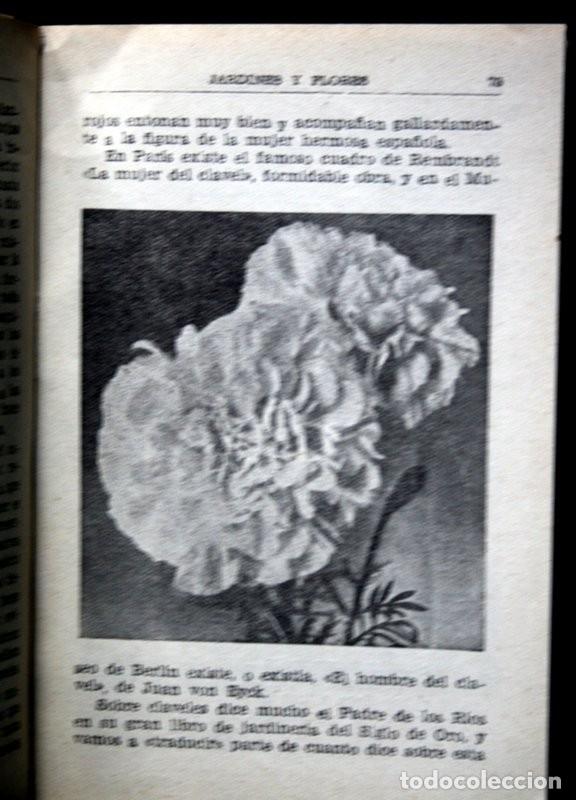 Libros de segunda mano: JARDINES Y FLORES - Antonio ALLUE MORER - CERES - VALLADOLID - ILUSTRADO - Foto 5 - 49065723