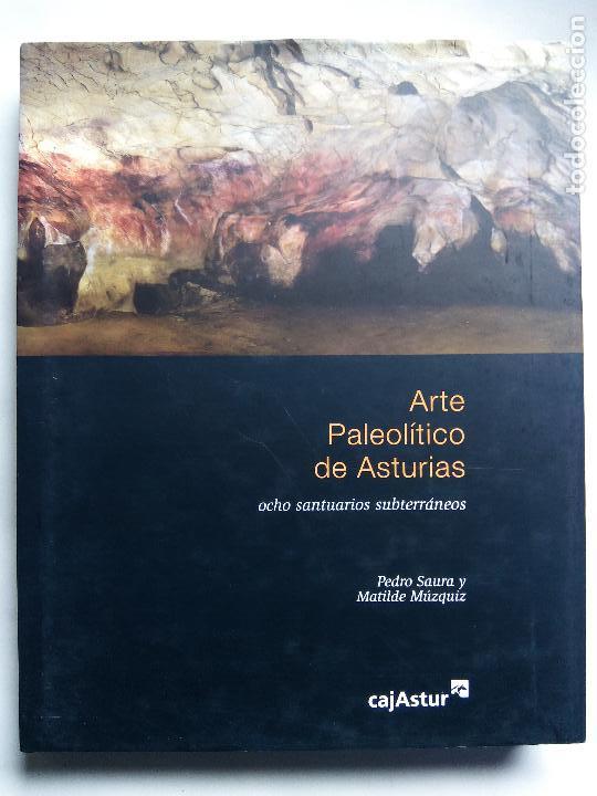 ARTE PALEOLÍTICO DE ASTURIAS. PEDRO SAURA MATILDE MÚZQUIZ CAJASTUR 2007 OCHO SANTUARIOS SUBTERRÁNEOS (Libros de Segunda Mano - Ciencias, Manuales y Oficios - Paleontología y Geología)