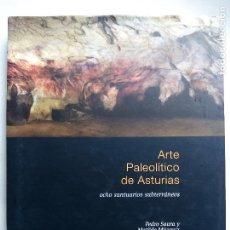 Libros de segunda mano: ARTE PALEOLÍTICO DE ASTURIAS. PEDRO SAURA MATILDE MÚZQUIZ CAJASTUR 2007 OCHO SANTUARIOS SUBTERRÁNEOS. Lote 130211970
