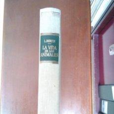 Libros de segunda mano: LA VIDA DE LOS ANIMALES TOMO 1. L. BERTÍN. ED. LABOR, 1ª ED. 1970. Lote 116459627
