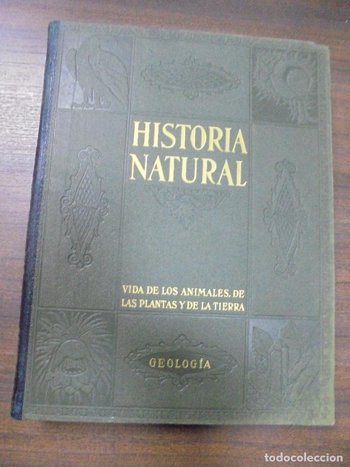 HISTORIA NATURAL.VIDA DE LOS ANIMALES, DE LAS PLANTAS Y DE LA TIERRA.TOMO IV. GEOLOGIA. GALLACH.1960 (Libros de Segunda Mano - Ciencias, Manuales y Oficios - Paleontología y Geología)