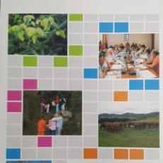Libros de segunda mano: CATÁLOGO DE EXPERIENCIAS DEMOSTRATIVAS EN LAS RESERVAS DE LA BIOSFERA. OAPN M. MEDIO AMBIENTE UNESCO. Lote 116946490