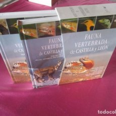 Libros de segunda mano: FAUNA VERTEBRADA DE CASTILLA Y LEÓN. Lote 117532519