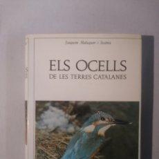 Libros de segunda mano: ELS OCELLS DE LES TERRES CATALANES JOAQUIM MALUQUER I SOSTRES. Lote 117943135