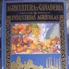 Libros de segunda mano: AGRICULTURA Y GANADERIA E INDUSTRIAS AGRICOLAS , A.GARCIA ROMERO 1955,SOPENA,718PP USADO. Lote 118064851